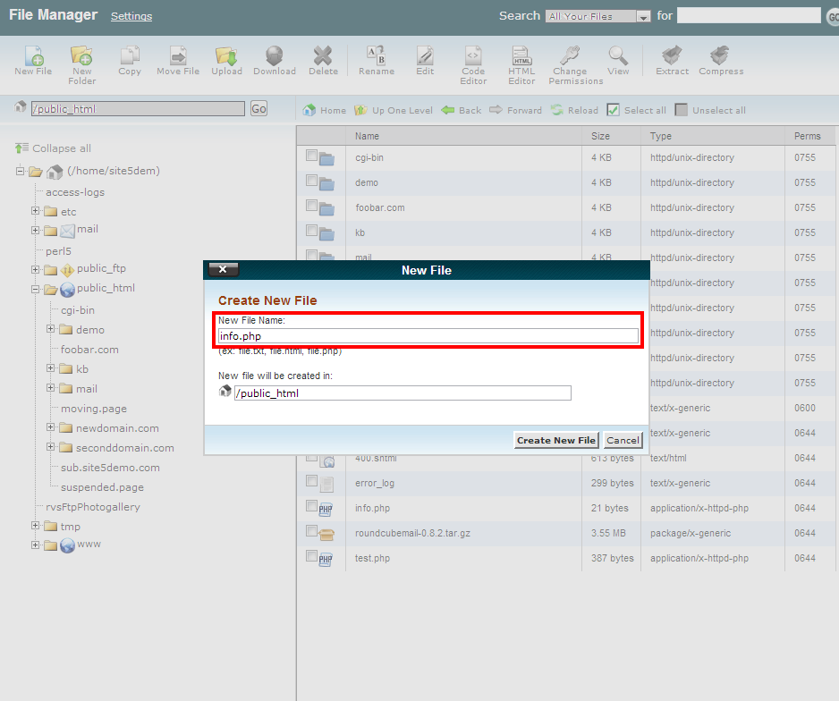 Using Forms and Processing User Input